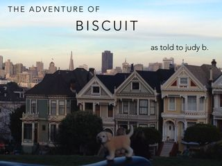 Biscuit_coverpic